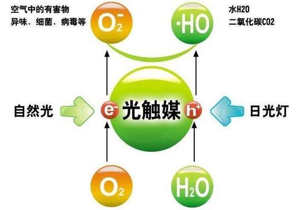 甲醛檢測,甲醛治理,除甲醛公司,除甲醛的方法,康荃環測